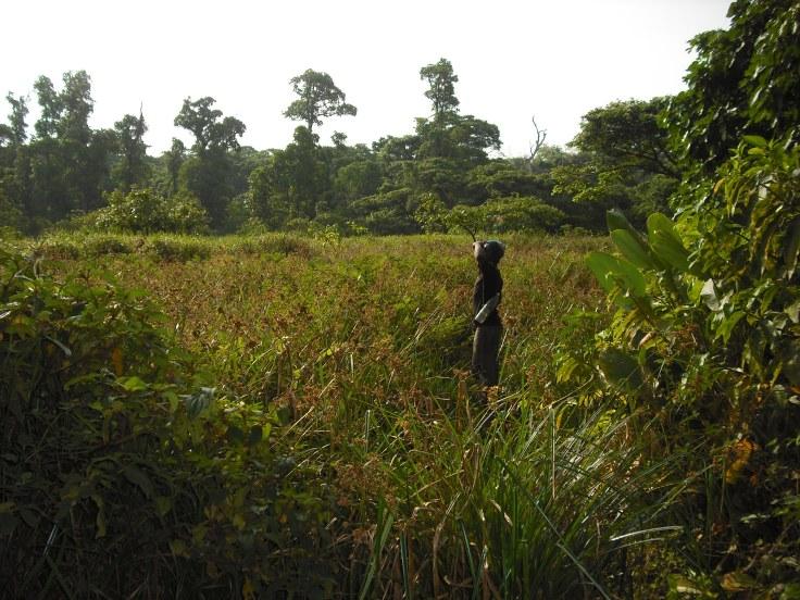 trekking chinko africa.JPG